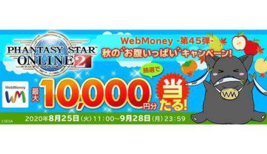[WebMoney] 『ファンタシースターオンライン2』WebMoneyキャンペーン第45弾|2020年9月28日(月)23:59まで